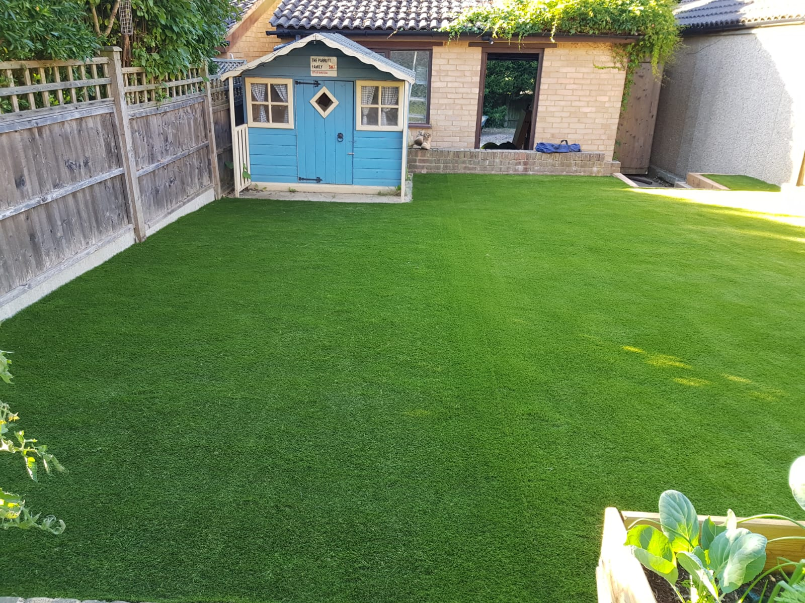 Kewlees Artificial Grass and Ladders